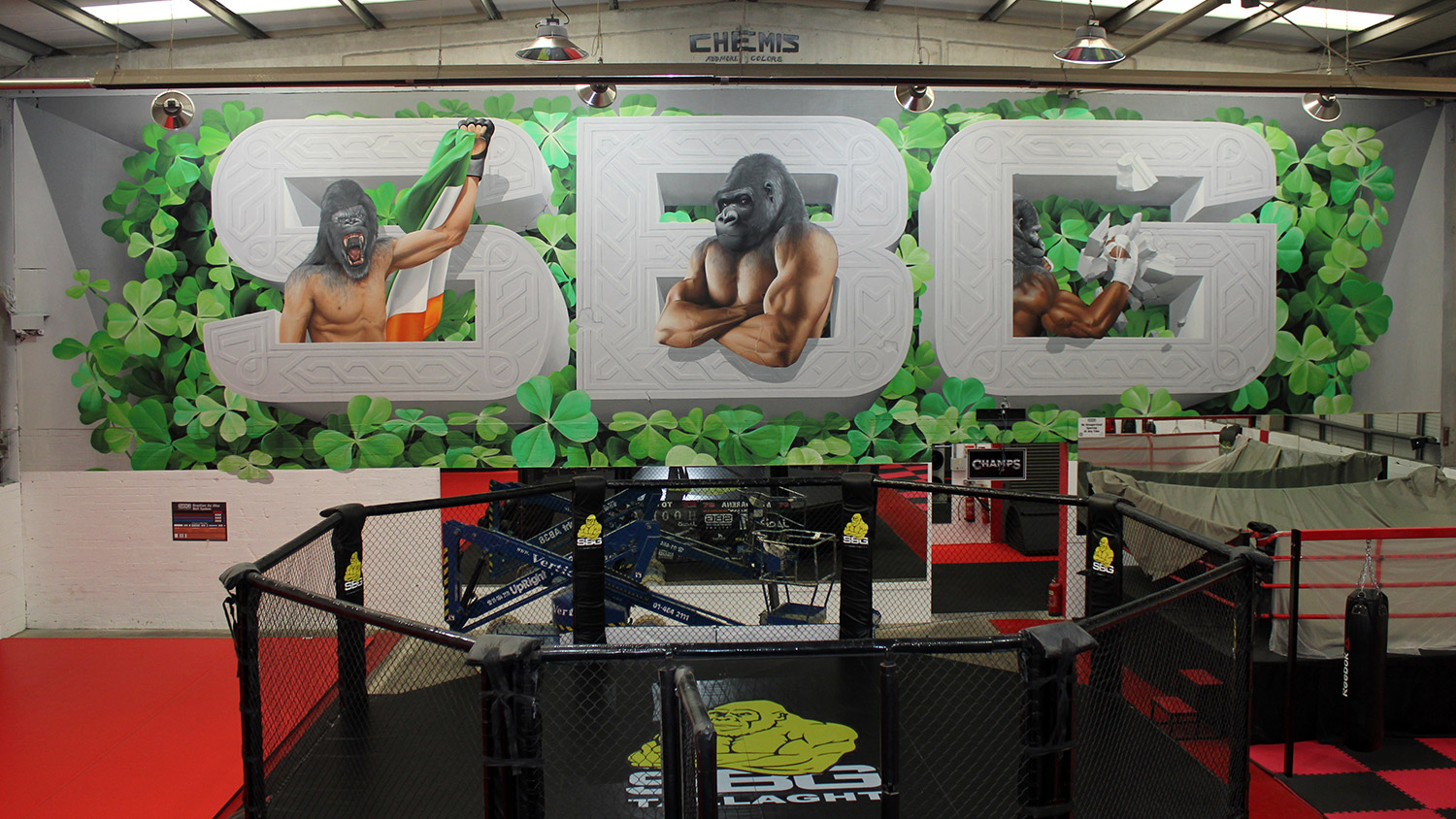SBG, commission, ireland, chemis, mural, conor mcgregor
