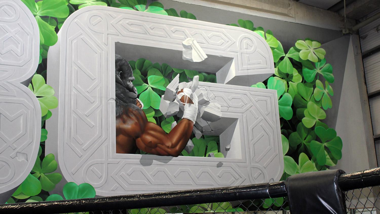 SBG, commission, ireland, chemis, mural, conor mcgregor